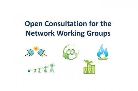 consultation-wgs